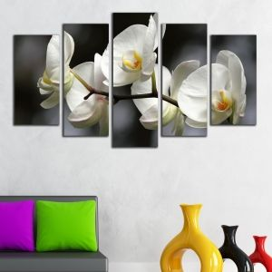 0324 Wall art decoration (set of 5 pieces) White orchids on grey background