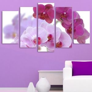 0099 Wall art decoration (set of 5 pieces) Beautiful orchids