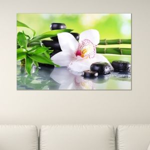 0162_1 Wall art decoration White orchid with reflection
