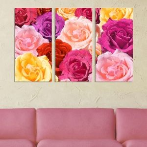 0050 Wall art decoration (set of 3 pieces Roses