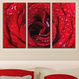 0032 Wall art decoration (set of 3 pieces)  Red rose