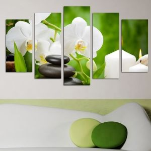 0146  Wall art decoration (set of 5 pieces) White orchids on green background