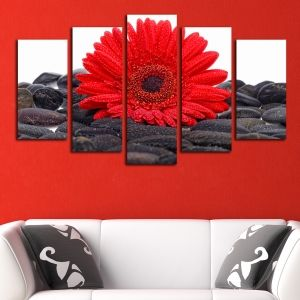 0160 Wall art decoration (set of 5 pieces) Red gerber