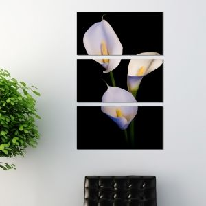 0199 Wall art decoration (set of 3 pieces) Calla lilies