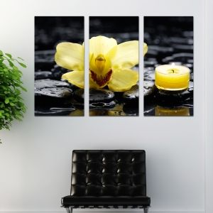 0206 Wall art decoration (set of 3 pieces) SPA - yellow orchid
