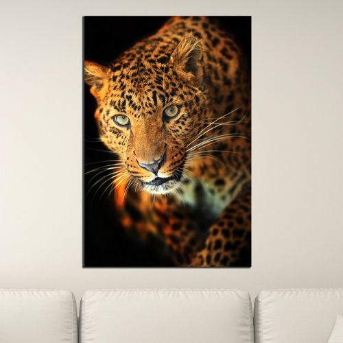 Wall art decoration Leopard - black background