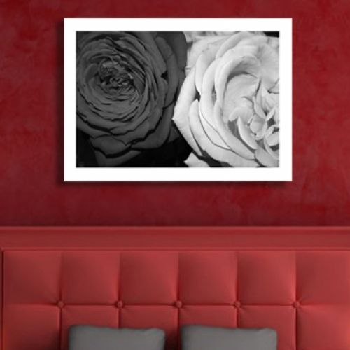 Canvas black and white roses