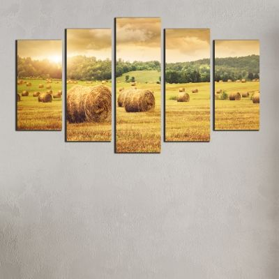 0317 Wall art decoration (set of 5 pieces) Sunset over the field