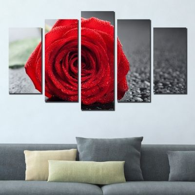 0356 Wall art decoration (set of 5 pieces) Red rose