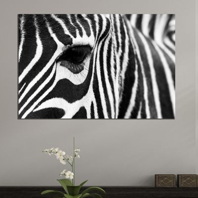 Wall art decoration black and white Zebra
