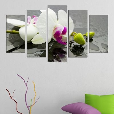 0439 Wall art decoration (set of 5 pieces) White orchid