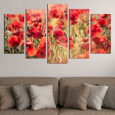 Canvas art set Poppies in red and green