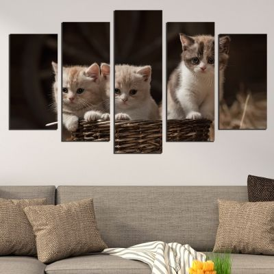 5 pieces home decoration in brown with sweet cats