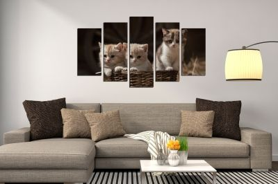 canvas wall art set sweet cats in brown