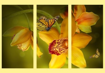 Wall decoration with yellow orchids