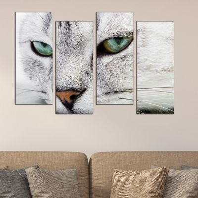 0121 Wall art decoration (set of 4 pieces) Cat eyes