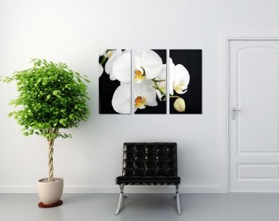 Canvas set with orchids in black and white