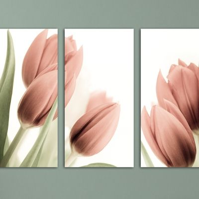 set of 3 canvas arts