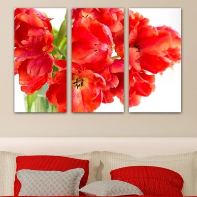 0142 Wall art decoration (set of 3 pieces) Beautiful tulips