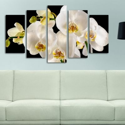0143  Wall art decoration (set of 5 pieces) White orchids on black background