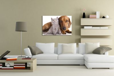 Wall art decoration with dog and cat