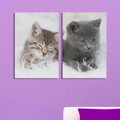 0025 Canvas 2 parts Cute kitties