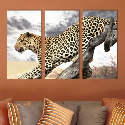 0245 Wall art decoration (set of 3 pieces) Leopard
