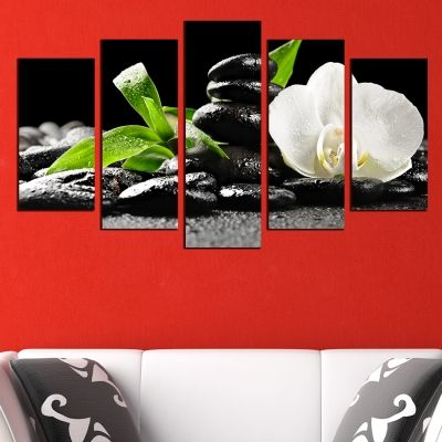 0355 Wall art decoration (set of 5 pieces) White orchid
