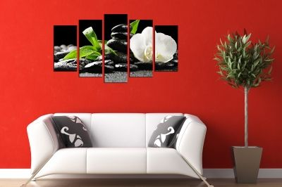 white orchid canvas wall art