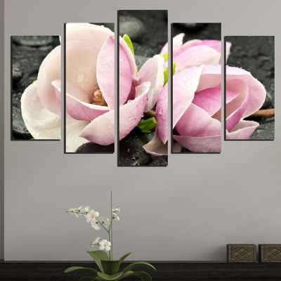 Canvas art set zen composition with magnolias