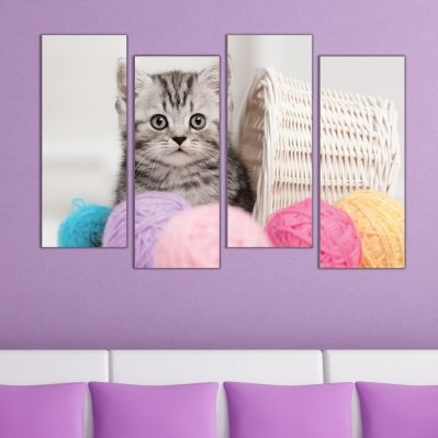 0574  Wall art decoration (set of 4 pieces) Fluffy kitten
