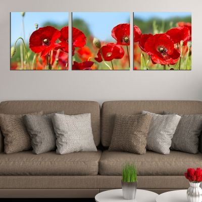 0626 Wall art decoration (set of 3 pieces) Poppies