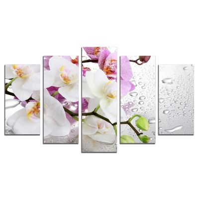 0326 Wall art decoration (set of 5 pieces) White and purple orchids