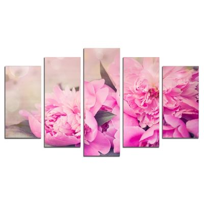 0512 Wall art decoration (set of 5 pieces) Peonies