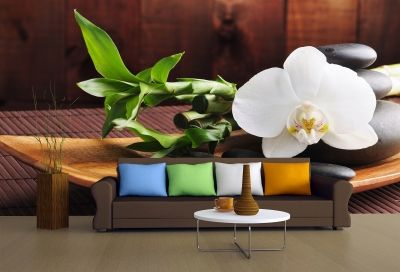 T0117 Wallpaper SPA - white orchid