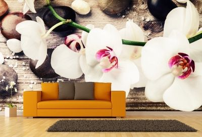 T9054 Wallpaper White orchids