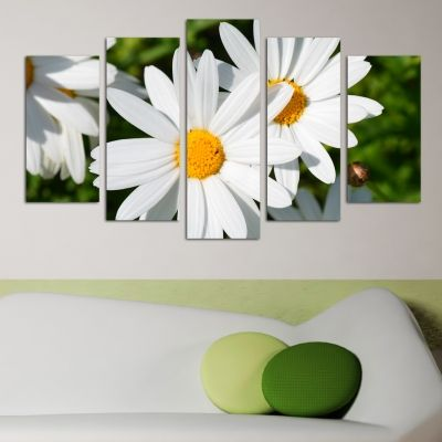 0147  Wall art decoration (set of 5 pieces) Daisies