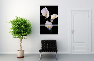 Home decoration black and white Calla liies